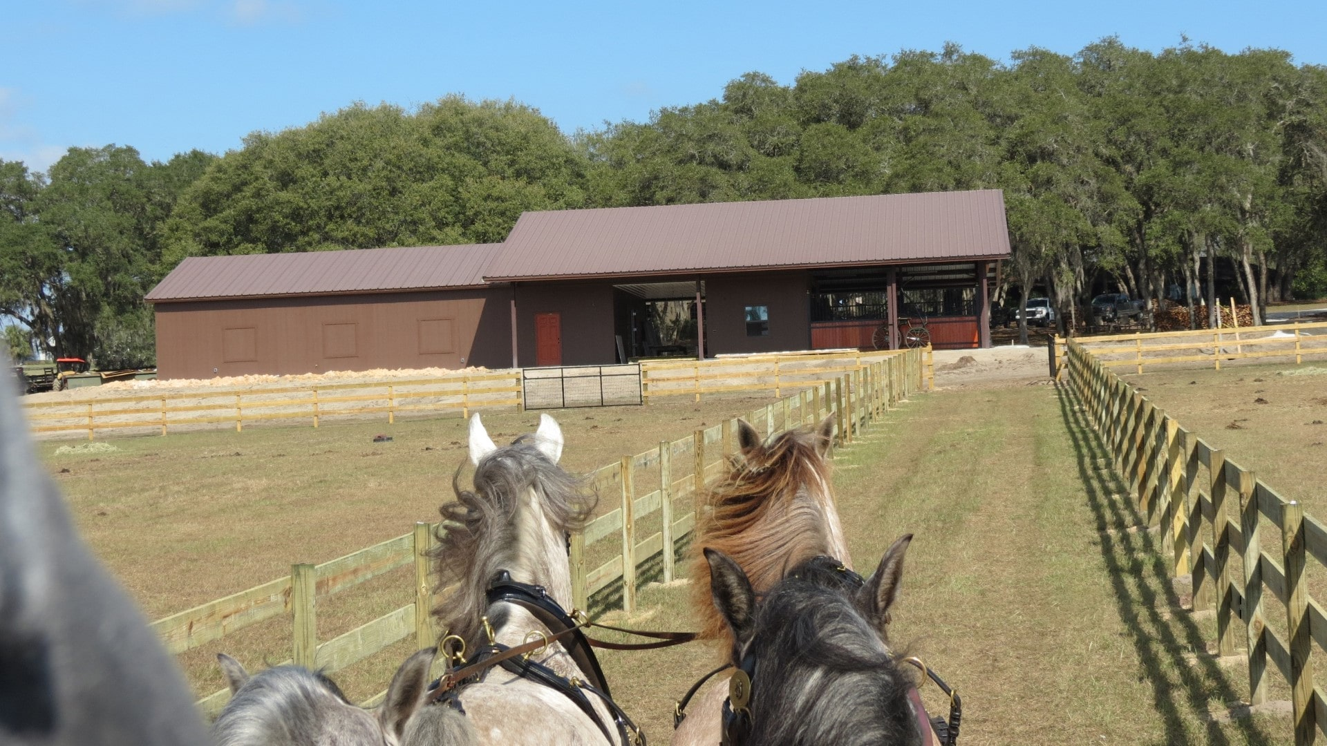 Custom brown steel horse barn with two rooflines on beautiful equestrian property.